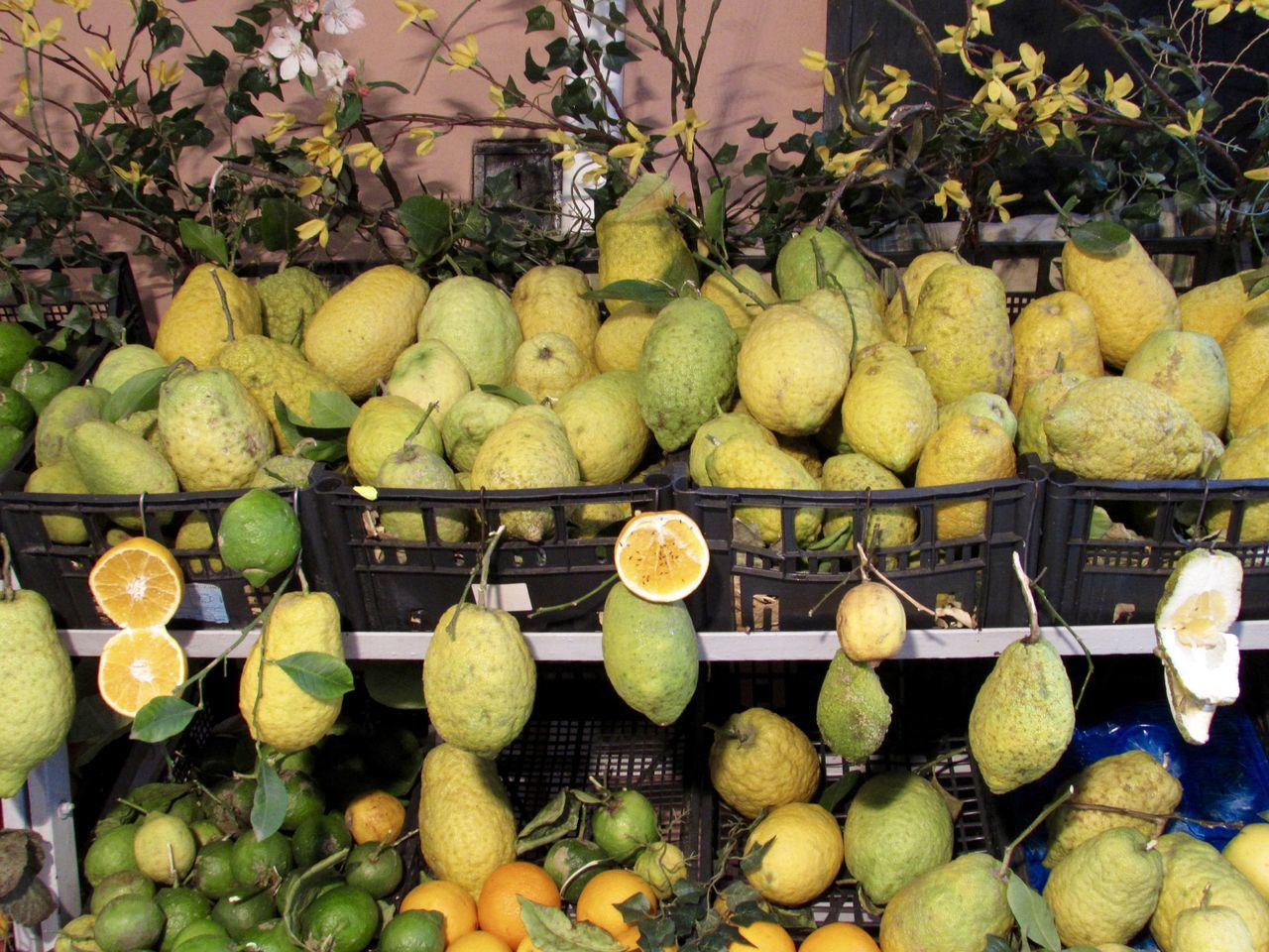 fruit, citrus fruit, healthy eating, food and drink, large group of objects, food, no people, freshness, abundance, for sale, variation, pear, choice, lime, day, outdoors, market, tree, growth, close-up