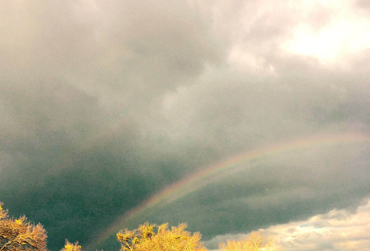 rainbow, weather, nature, beauty in nature, no people, scenics, day, double rainbow, cloud - sky, sky, tranquility, outdoors, storm cloud, tree