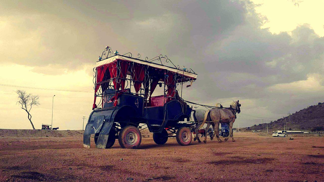 تصويري ☺💕 تصميمي ❤ الطايف الهدا سيلفي من سنابي ☺❤❤ سناب_شات انا  Me مكة الردف