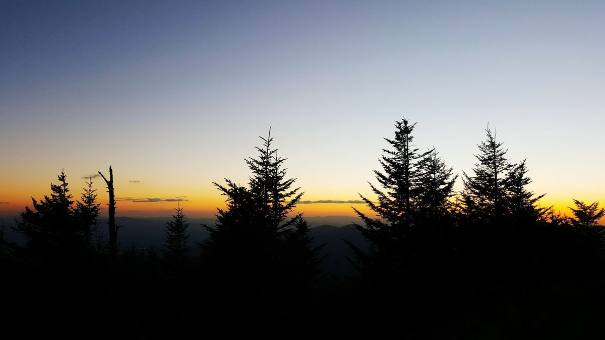 Twilight and silhouettes from Clingmans Dome in Great Smoky Mountains National Park Dusk Evening Evening Sky Spruce Trees Evergreen Trees Appalachian Mountains Nature Hiking Outdoors