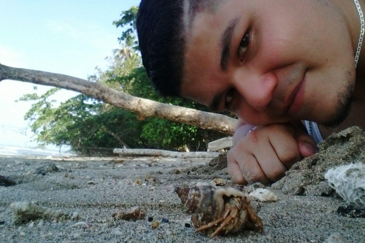 Caribbean Sea Caribbean Outdoors Sea Day Crab Sand Beach Puerto Limón Caribe Costa Rica Costarica Pura Vida ✌ Puravida Close-up Puerto Viejo