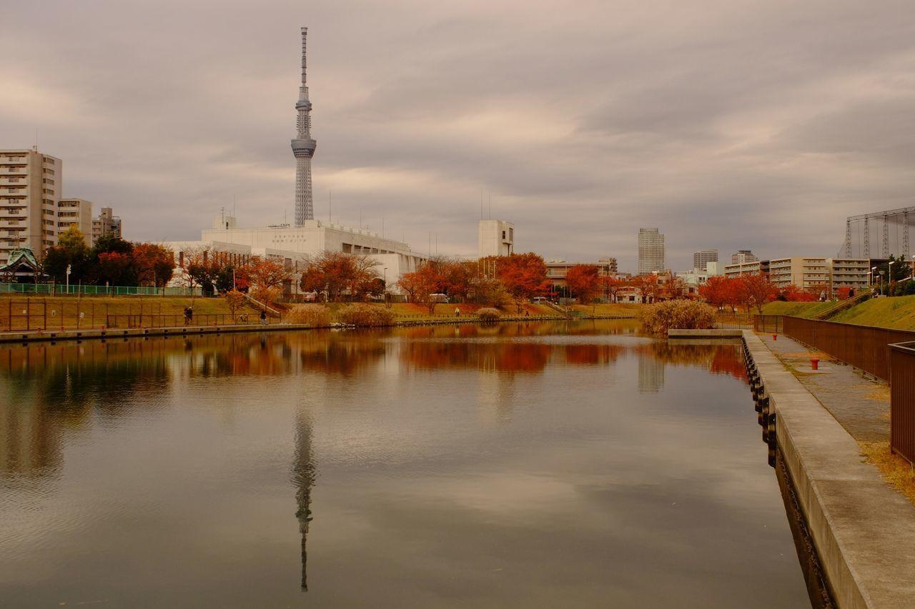 Tokyo,Japan Tokyoskytree 東京スカイツリー 紅葉