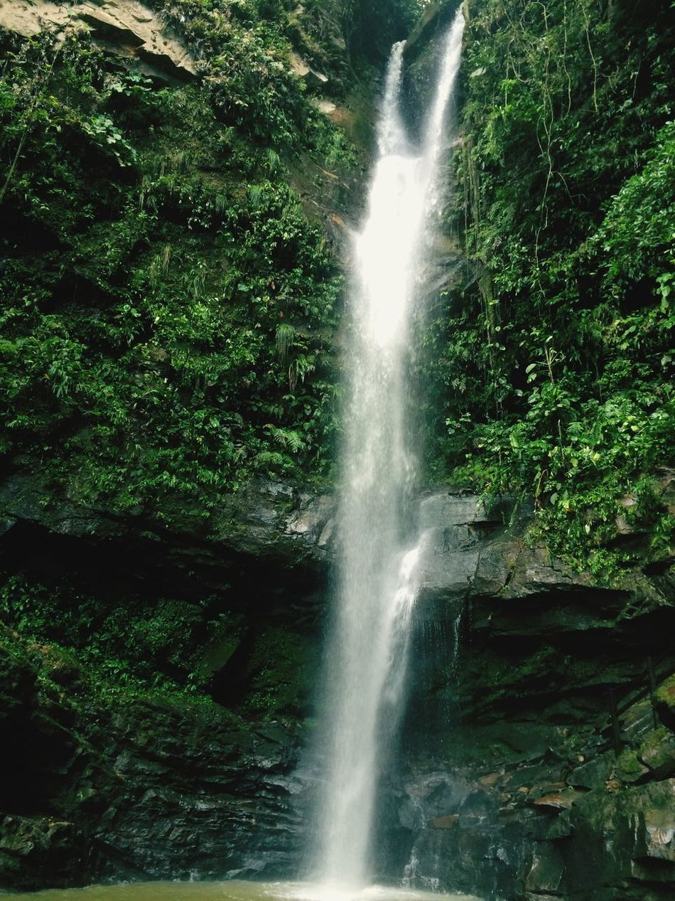 Ahuashiyacu falls in the Peruvian jungle Waterfall Beauty In Nature Nature Water Scenics Long Exposure Motion Flowing Water Lush Foliage Forest Idyllic Green Color Outdoors Flowing No People Rock - Object Freshness Tranquility Day Tree Peru travel adventure sightseeing vacation Perú ❤