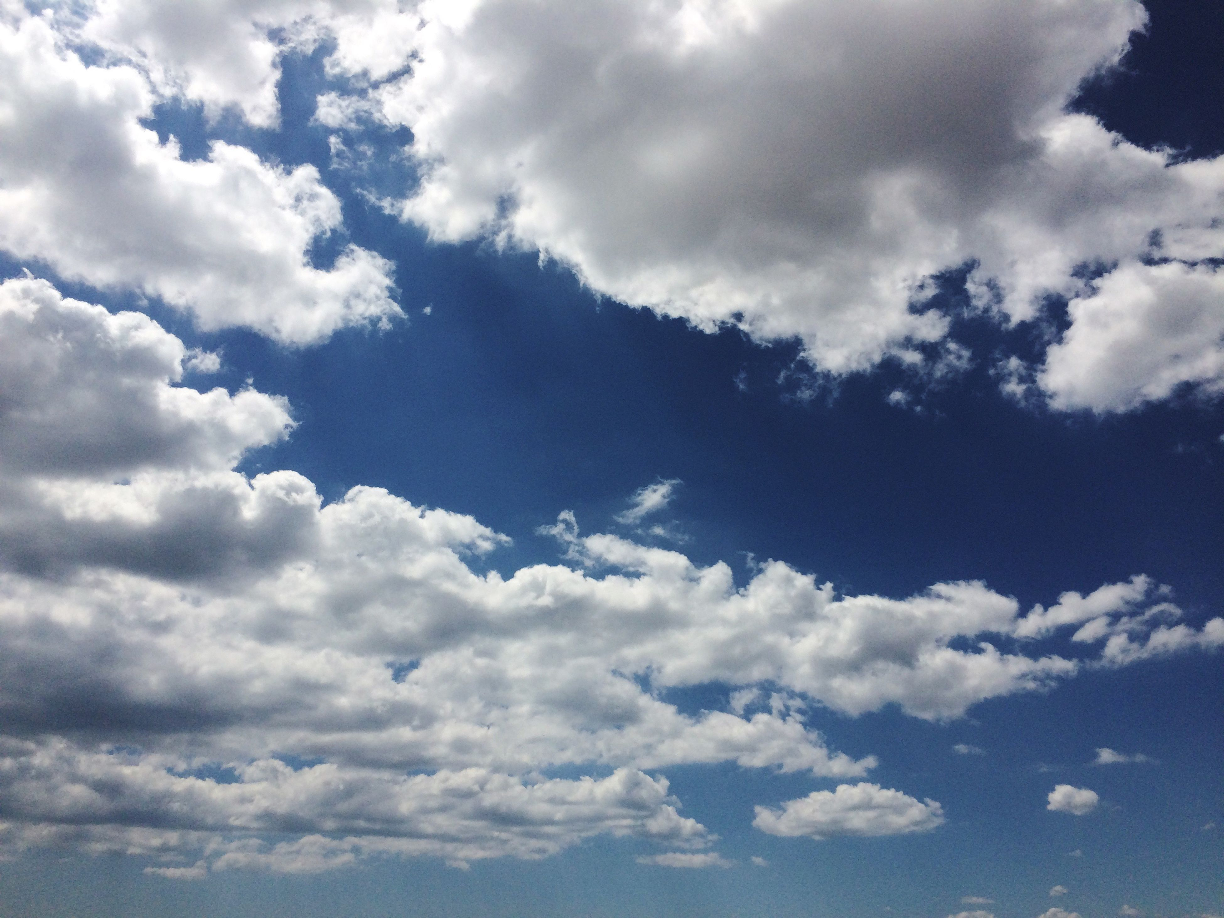 sky, cloud - sky, beauty in nature, tranquility, scenics, low angle view, tranquil scene, cloudy, sky only, cloudscape, nature, cloud, white color, backgrounds, blue, idyllic, fluffy, white, day, outdoors, majestic, full frame, no people, weather, softness, cumulus cloud, overcast