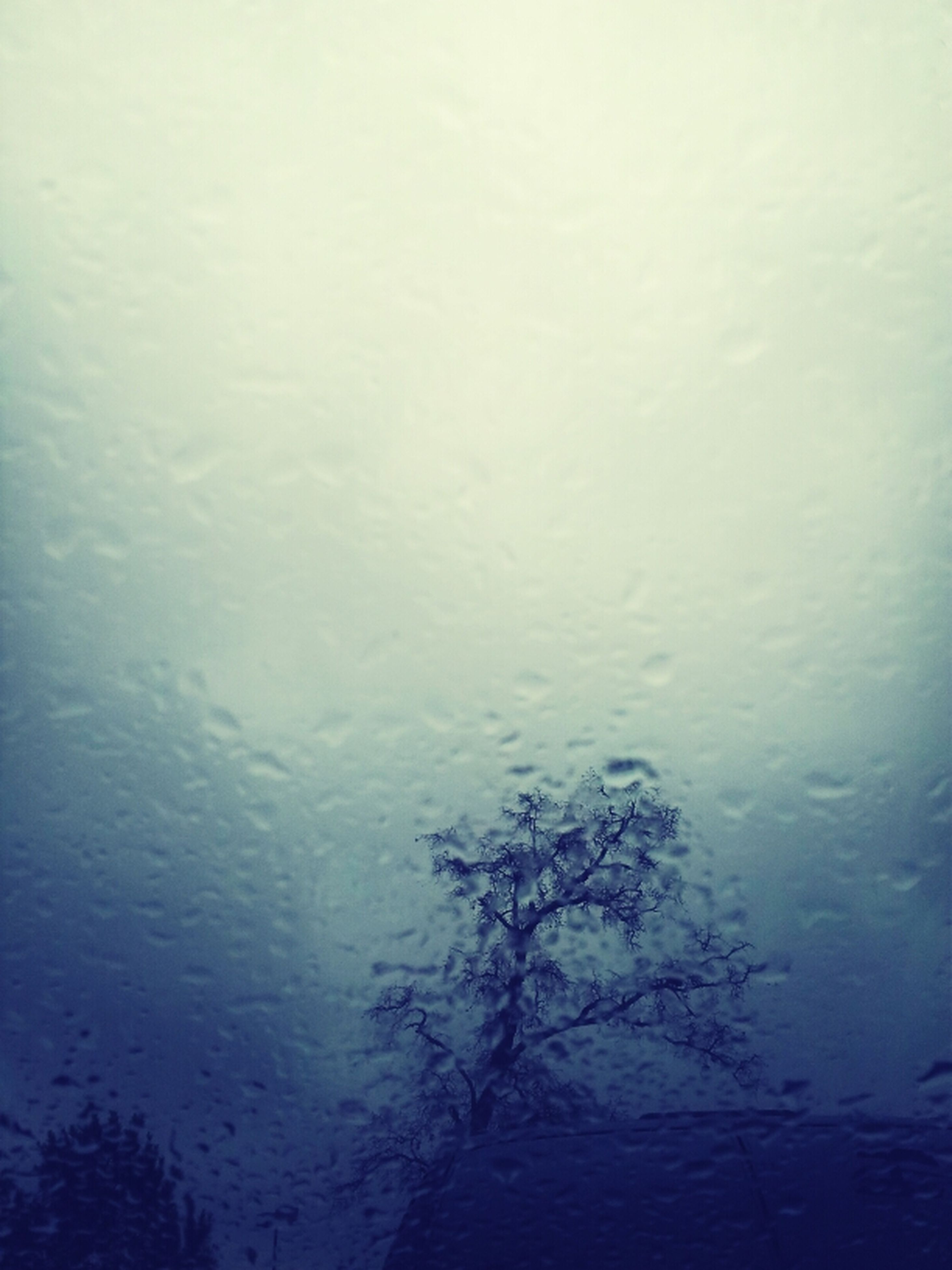 weather, rain, wet, water, season, drop, indoors, window, full frame, backgrounds, fog, transparent, glass - material, nature, raindrop, sky, tranquility, copy space, no people, reflection