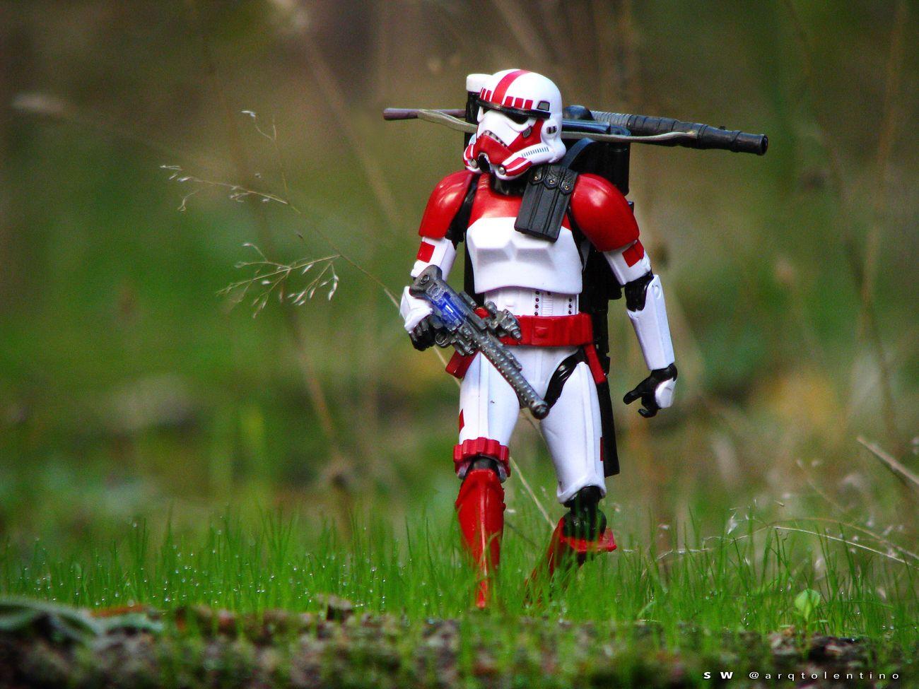 """SW - FUERZAS EXPEDICIONARIAS. """"Los ShockTroopers fueron soldados clones introducidos durante las Guerras Clon, se les distinguía por las marcas rojas en la armadura y casco, siendo ellos los que originalmente formaron la Guardia de Coruscant. Durante la era del Imperio Galáctico también usaron este color pero en todo el uniforme."""" [Wikia] Theblackseries Legostarwars Toysaremydrugs Starwarstheblackseries MayThe4thBeWithYou Jedi Disney TheForceAwakens Sandtroopers Stormtroopers Toyoutsiders"""