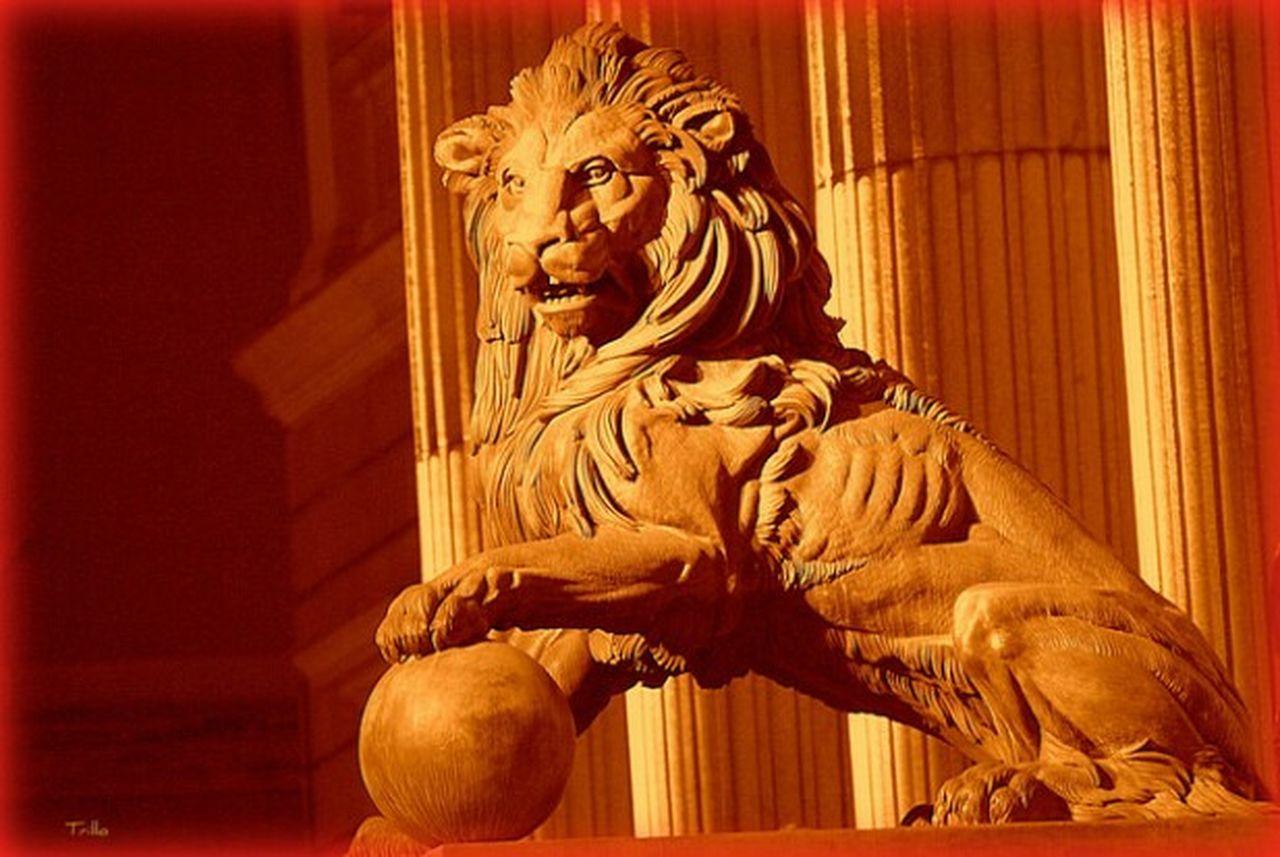 43 Golden Moments NocheMAdrid Sombras Y Luces... LeonesdelasCortes