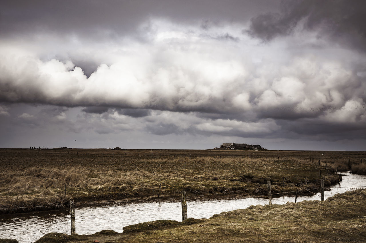 Hallig Langeness, approaching storm Agriculture Cloud - Sky Clouds Field Germany Grassland Hallig Horizon Landscape Langeness Lonelieness Lonely National Park Nature Nature North Northsea Outdoors Rural Scene Scenics Sky Storm Storm Cloud Warft Weather