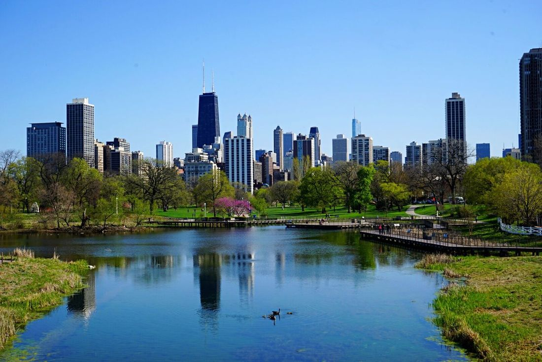 Chicago Chicago Architecture Chicago Skyline Chicago ♥ Lincoln Park Zoo Lincoln Park Summer Building River Battle Of The Cities