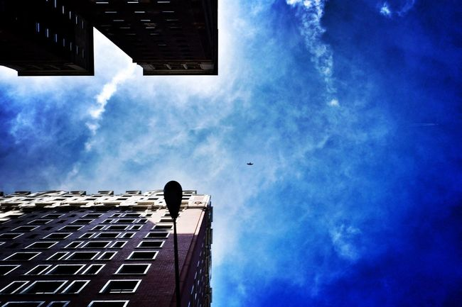 At the avenues of Michigan and Balbo, Chicago. Lookingup Shootermag_usa Eye4photography  EyeEm Best Shots Photojournalism Photooftheday Reportage Documentary Streetphotography Color Bird Building Architecture Chicago