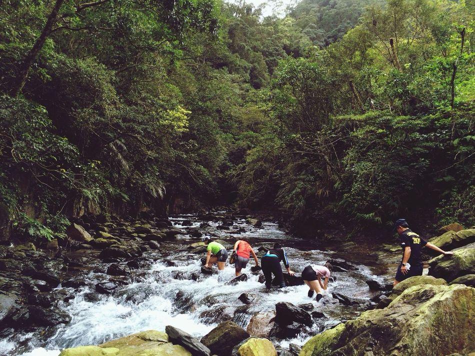 Wild wild wild Nice Views Relaxing On A Hike Taiwan