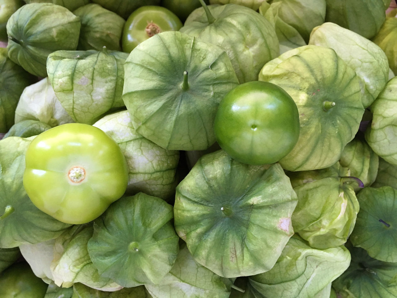 Close-up Food Food And Drink Freshness Freshness Green Green Tomatoes Healthy Eating Healthy Eating; Ingredient Mexican Cuisine Mexican Food Mexican Husk Tomato No People Raw Food Ripe Tomate Tomatillo Tomatillos Tomato Tomatoes Vegetable