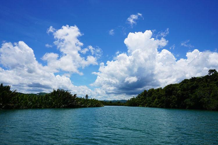 2016 Bohol Bohol Island Cloud Cloud - Sky Cruise Forest Lake Landscape Nature Outdoors Philippines River Robock River Robock River Cruise Scenics Sky Tree Water クルーズ フィリピン ボホール島 ロボック川