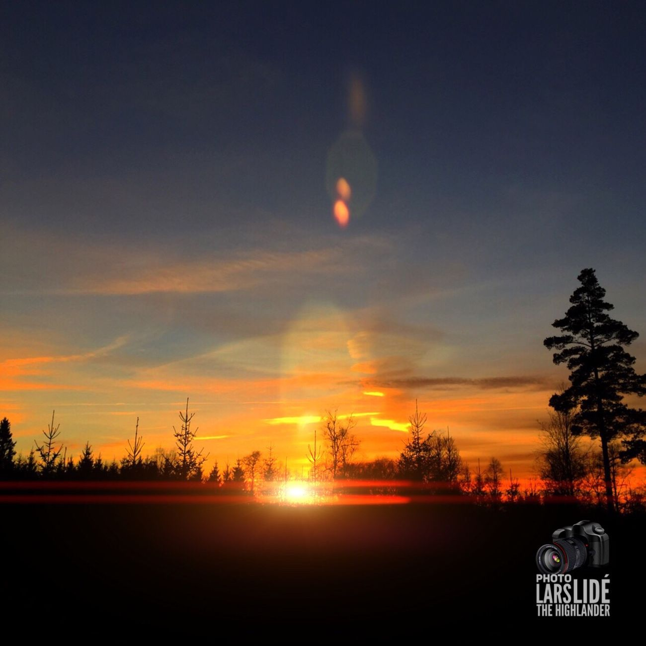 Sunset Sky Nature Silhouette Beauty In Nature No People Tree Outdoors Countryside Taking Photos Winter Wilderness Tree Area WoodLand Cold Temperature Cloud - Sky