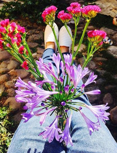Out Of The Box Flower Florecitas_mx Sunday . Date un respiro