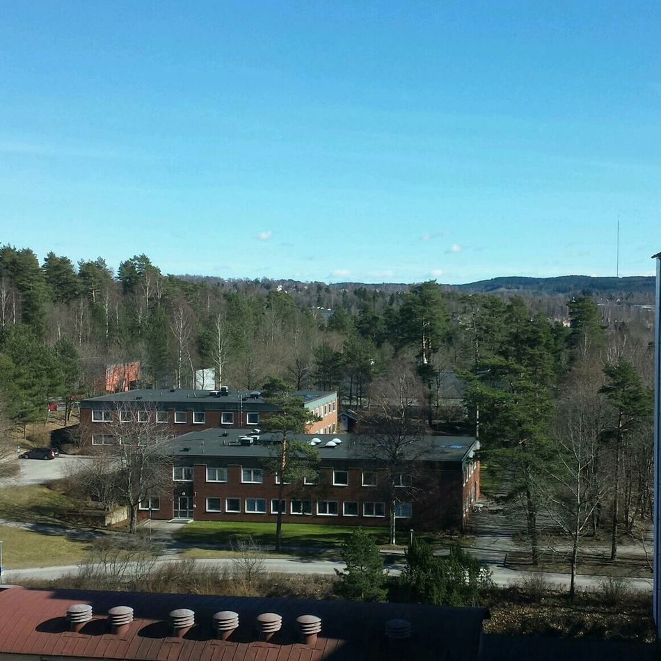 Spring Sun Love Hospital ?