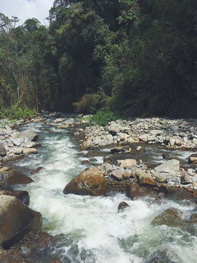 Ecuador River Water Nature Beauty In Nature Tranquil Scene Forest Motion Let's Go. Together. EyeEmNewHere Sommergefühle Lost In The Landscape Connected By Travel
