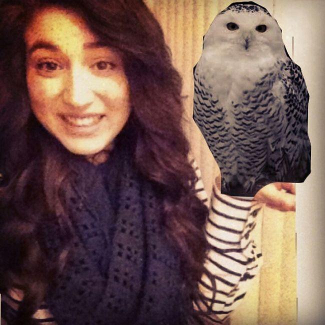Everyone Meet My Pet Owl Genesis <3