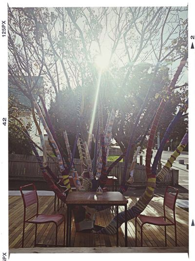 Amazing idea for trees in autumn & winter. Cute little cafe down at Bridport which serves amazing tea! Landscape DIY Cafe Creative
