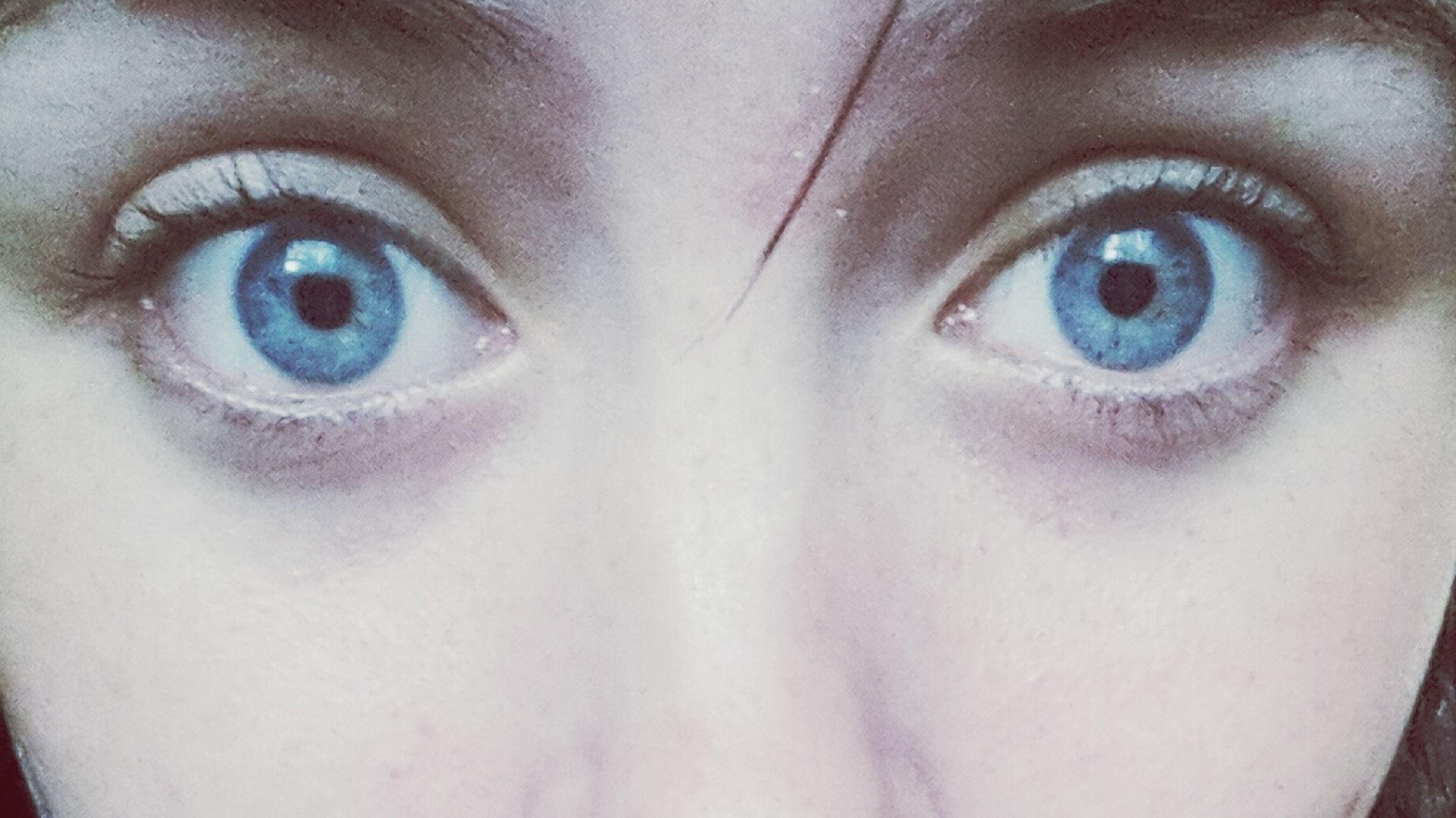 looking at camera, portrait, human eye, close-up, human face, headshot, indoors, eyelash, part of, eyesight, lifestyles, extreme close-up, full frame, blue eyes, front view, human skin, sensory perception