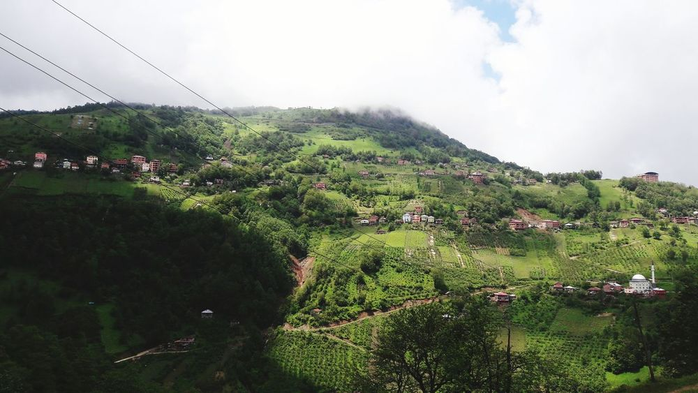 Cloud - Sky Social Issues Agriculture Nature Outdoors Sky Growth Accidents And Disasters No People Rural Scene Day Landscape Mountain Spraying Tree Beauty In Nature Tea Crop Irrigation Equipment