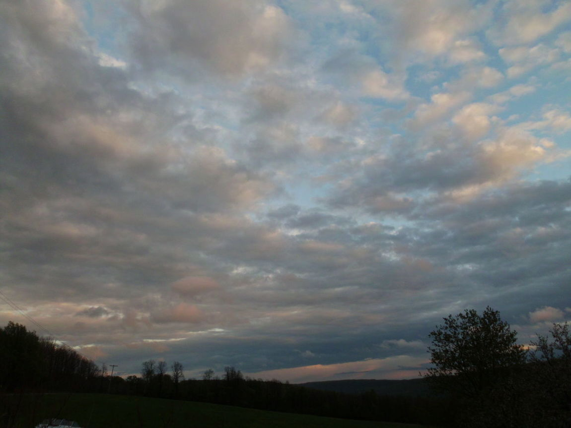 Beauty In Nature Cloud - Sky Field Landscape Nature No People Outdoors Scenics Silhouette Sky Sunset Tranquil Scene Tranquility Tree What Colors In The Sky !