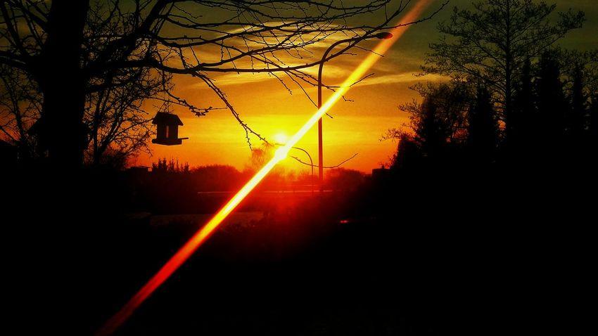 Sunrise Beautiful Morning February 2016 Snapseed Editing