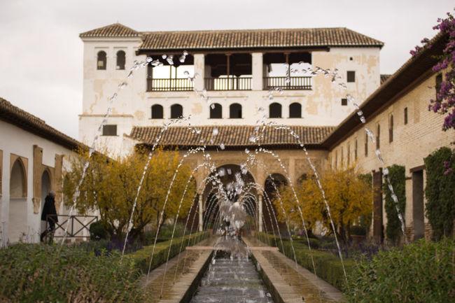 Traveling Alhambra De Granada  Garden Small And Swift EyeEm Best Shots Eyem Best Shots