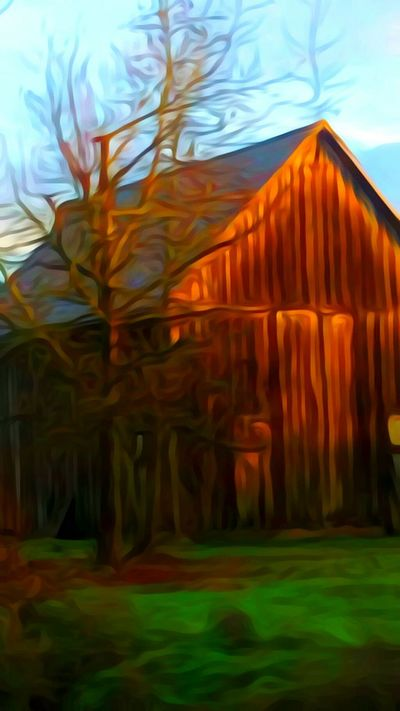 Beauty In Nature Outdoors Close-up Nature Barnstalker Barn Collection Barnhouse Idyllic The Way Forward Focus On Foreground For The Love Of Art Cold Temperature Early Morning Artistic Perception Oregon Sunrise Cellphone Photography Oregon Girl My Year My View Original Photography Oregon Explored Journey Residential Building Fragility Sunrise Colors Architectureporn