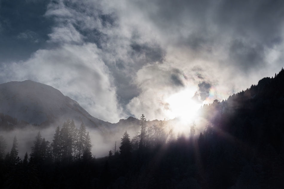 Morning sun through fog and clouds Beauty In Nature Cloud - Sky Firs Foggy Landscape Light And Shadow Mist Misty Morning Mountain Mountainview Newtalent Outdoors Shadow Shadow And Light Sun Sun Light Sun Through The Clouds Switzerland Switzerlandpictures The Alps Trees And Sky TheWeek On EyEem TheWeekOnEyeEM