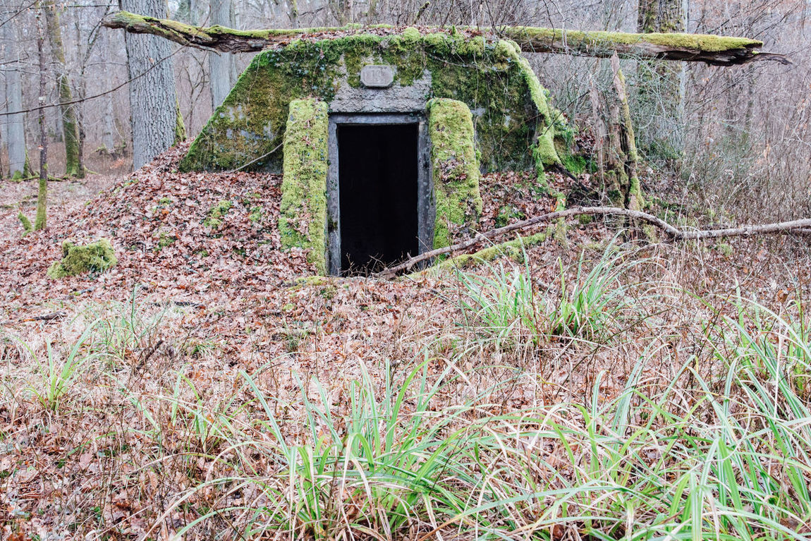 Abandoned Abandoned Places Architecture Base Building Exterior Built Structure Day Dead Guardhouse Military Moss Nature No People Old Outdoors Plant Tree Trunk Urbex World War 2