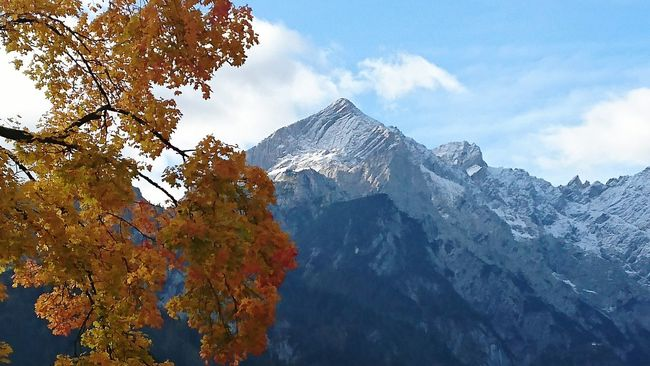 Alpspitze From My Point Of View Landscape Travel Photography Mountain Scenics Tree Tranquil Scene Beauty In Nature Low Angle View Season  Tranquility Sky Nature Mountain Range Majestic Snowcapped Mountain Cloud - Sky Non-urban Scene Blue Travel Destinations Day Outdoors Tourism Autumn🍁🍁🍁