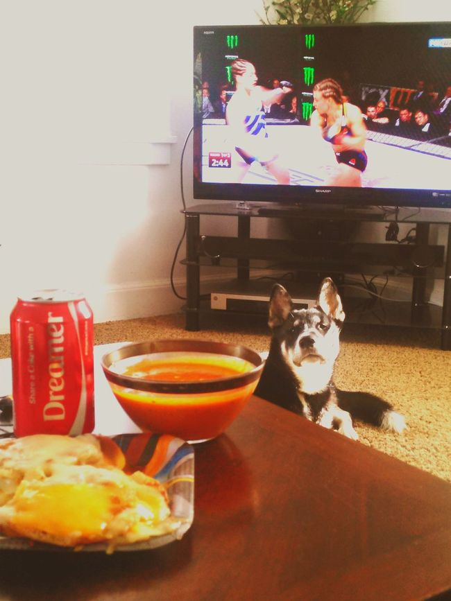UFC My sweet Saturday Saturdaynight Grilledcheese Tomatobasilbisque Dinner Time TasmVision Blessed  STONERS LIFE  Dreaming Shareacoke