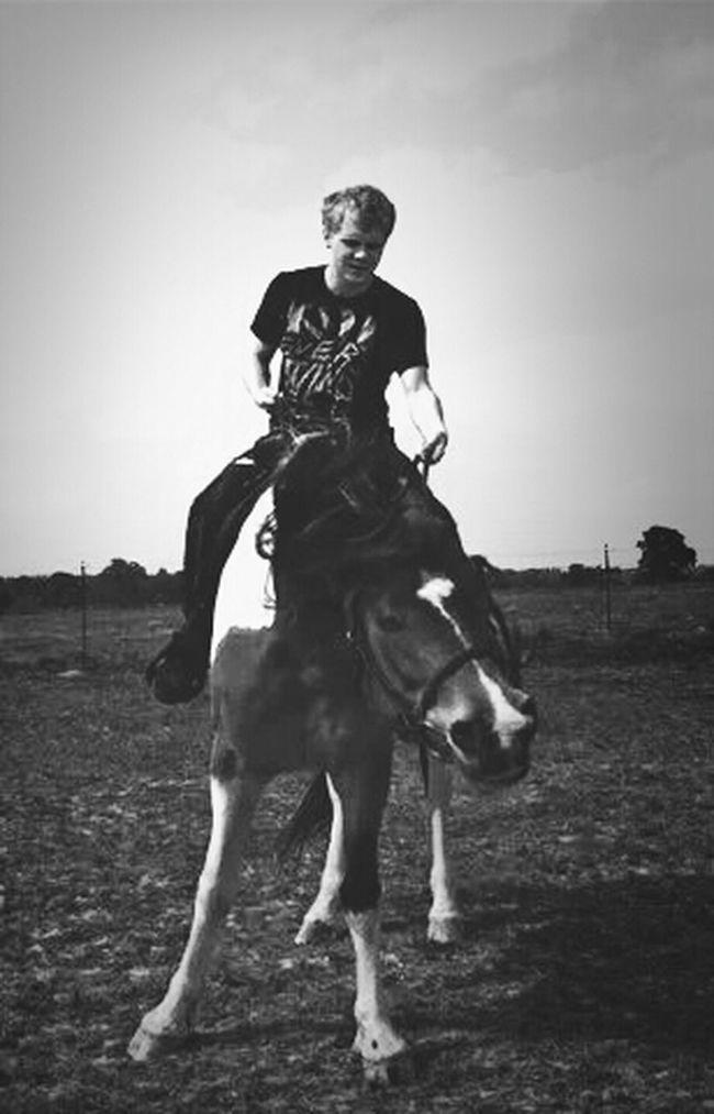 I miss my horses.