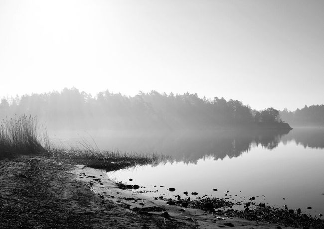 Morning light Kiomi Collection Eye4photography  EyeEm Nature Lover Archipelago Foggy Morning