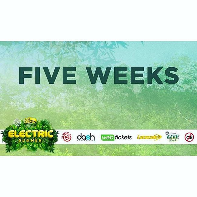 5 WEEKS LEFT CAPE TOWN 😁🎉 Contact me for tickets x 061 231 1007 @Regrann from @dash_productions - 🎶 5 Weeks until Electric Summer feat. Clean Bandit, Goldfish, Paul Bingham, Al Bairre, PH Fat & More hits South Africa! 7 Nov - Hamilton's Rugby Club (CT) 8 Nov - Zoo Lake (JHB) Contact 0849904482 or 072 564 3794 for Early Bird tickets 🎉 ElectricSummerSA ElectricSummerCPT ElectricSummerJHB CleanBandit Regrann