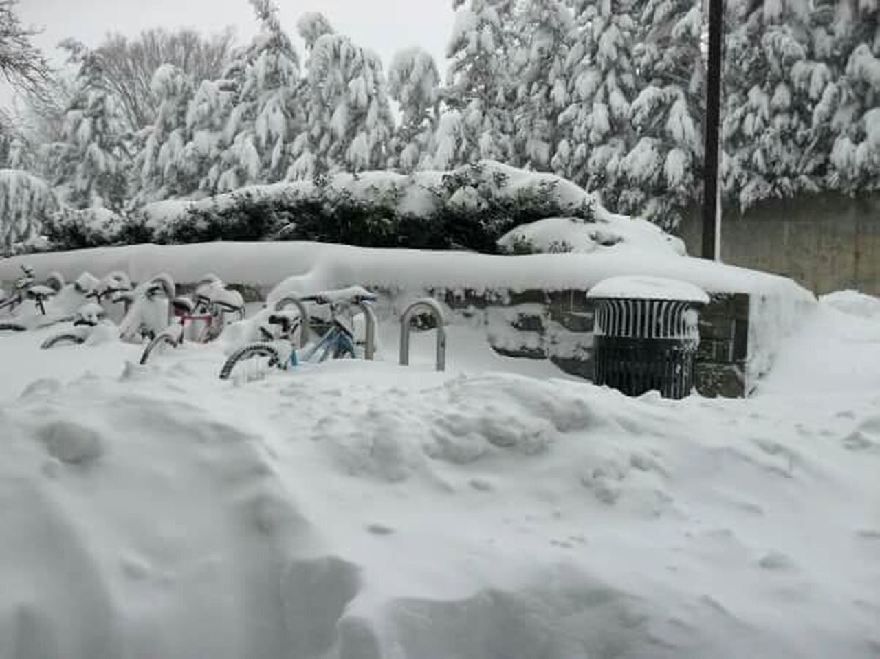Snowpocalypse Snow Accumulation Bike Rack Snowscape College Campus My Winter Favorites It's Cold Outside