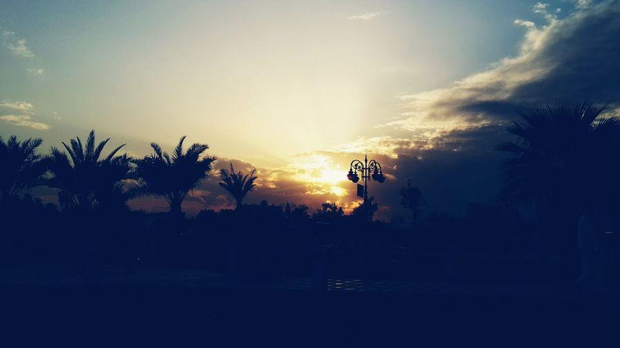 Taking Photos Enjoying Life Check This Out Sunset عرب_فوتو #تصويري #السعودية #غرد_بصورة #انستقرام #صور #صورة #صوره #تصميم #كانون #تصوير #كميرا #فوتو #لايك #مضحك #من_تصوير #من_تصميمي #هاشتاقات_انستقرام_العربية #سياحة #عدستي #هاشتاق #غرد #لايك #لقطة #نكت #ضحك #دبي عرب Saudi عرب_فوتو تصويري  عدستي الطبيعة Sunset_collection