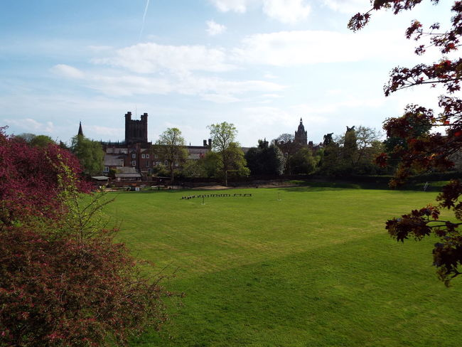 Veiw of the Chester Cathedral Falconry and Nature Gardens from the Chester City Wall Chester Cathedral Cathedral Green Area Grass Area Grass Green Trees Chester City Wall City Wall City Walls Blue Sky