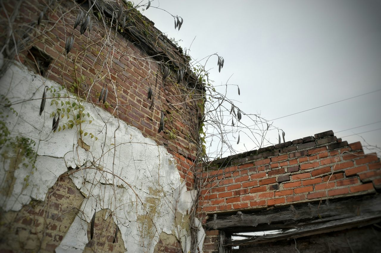 architecture, built structure, building exterior, brick wall, outdoors, day, no people, low angle view, roof, sky
