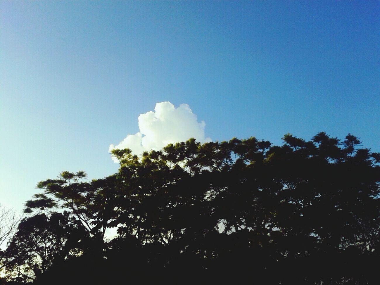 Naturelovers Clouds And Sky Skylovers Skyperfect
