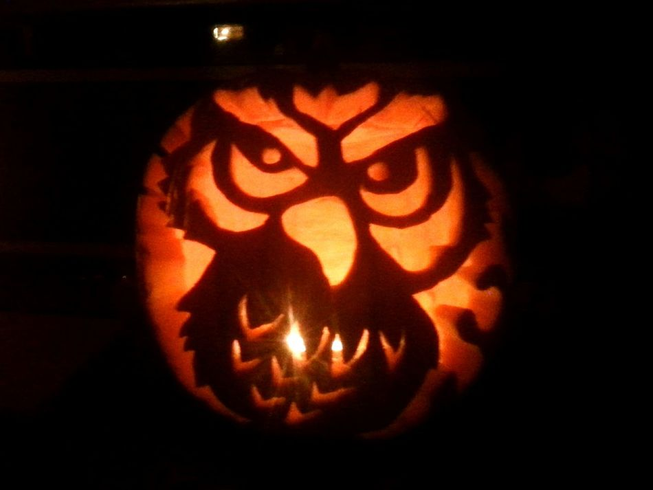Owl Pumpkin Art Carving Popular My Best Shot Wise Guy 3 Hours Work Halloween Full Moon Harvest Moon