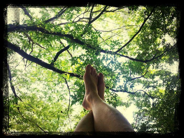 Enjoying Life Relaxing2013년 8월 휴식