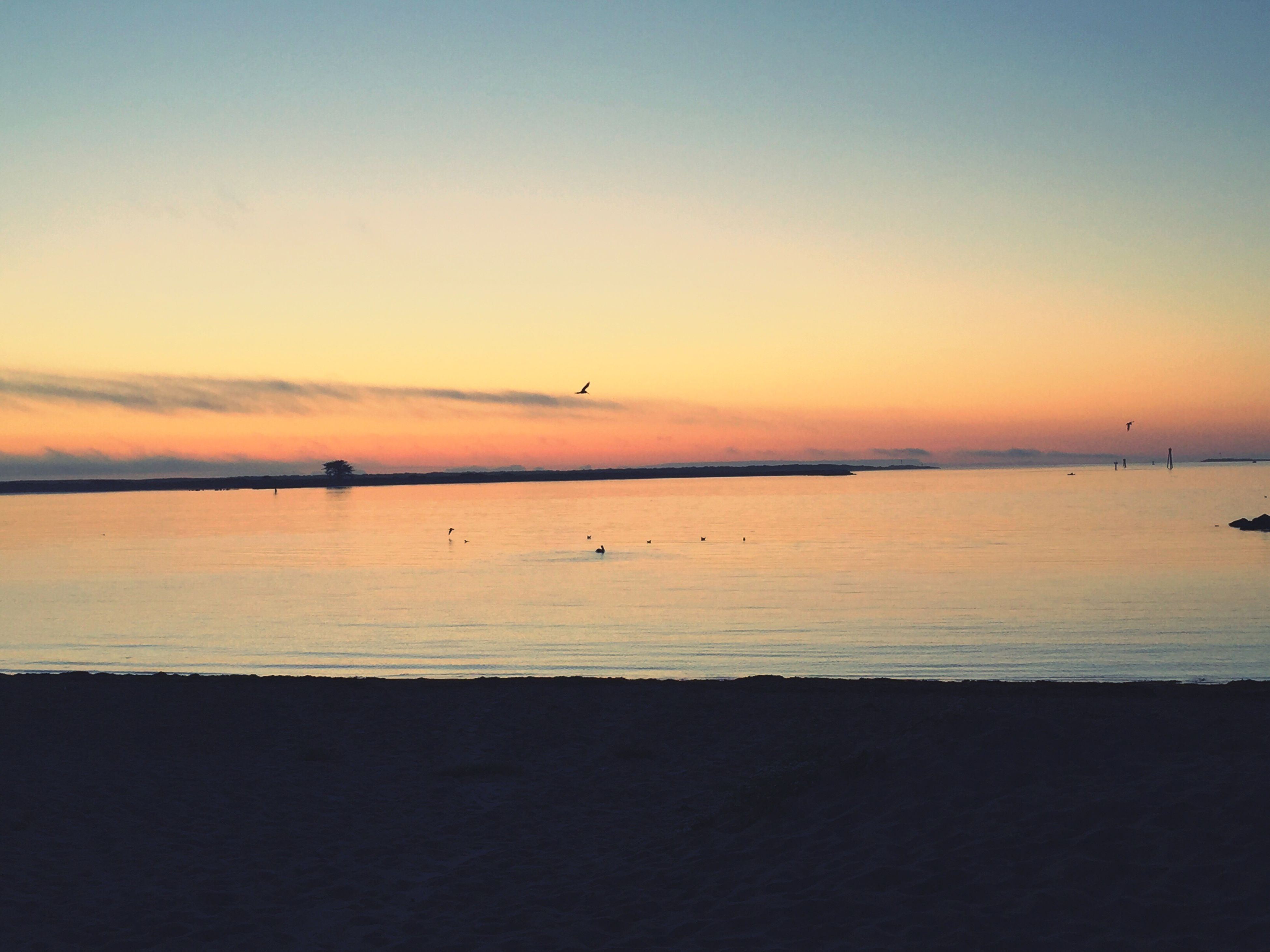 sunset, sea, water, scenics, tranquil scene, tranquility, beauty in nature, horizon over water, sky, orange color, nature, idyllic, outdoors, calm, non-urban scene, no people, remote, blue