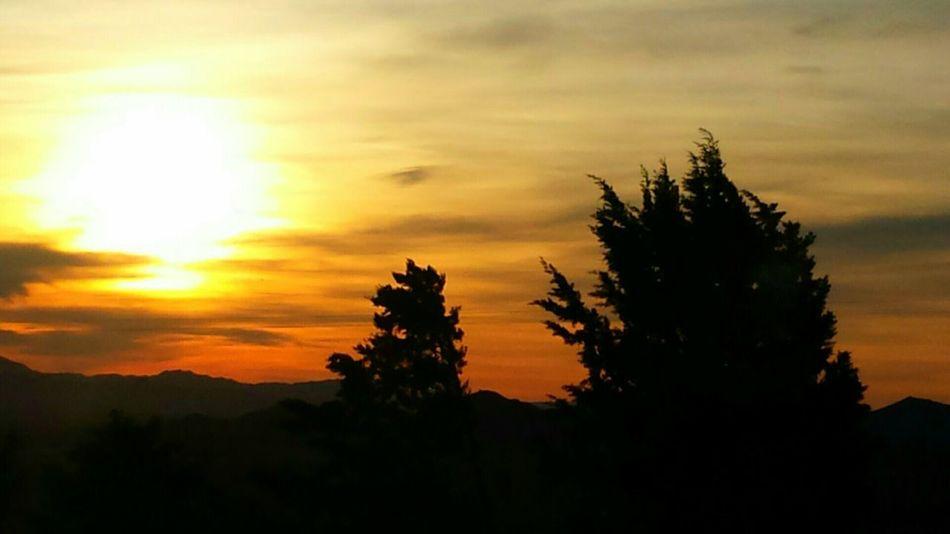 Sunbathing Sunrise_sunsets_aroundworld Sunrise Sun_collection Sky Collection Nature_collection The Great Outdoors - 2015 EyeEm Awards The Traveler - 2015 EyeEm Awards Moments-2015 Eyeem Awards Summer Views