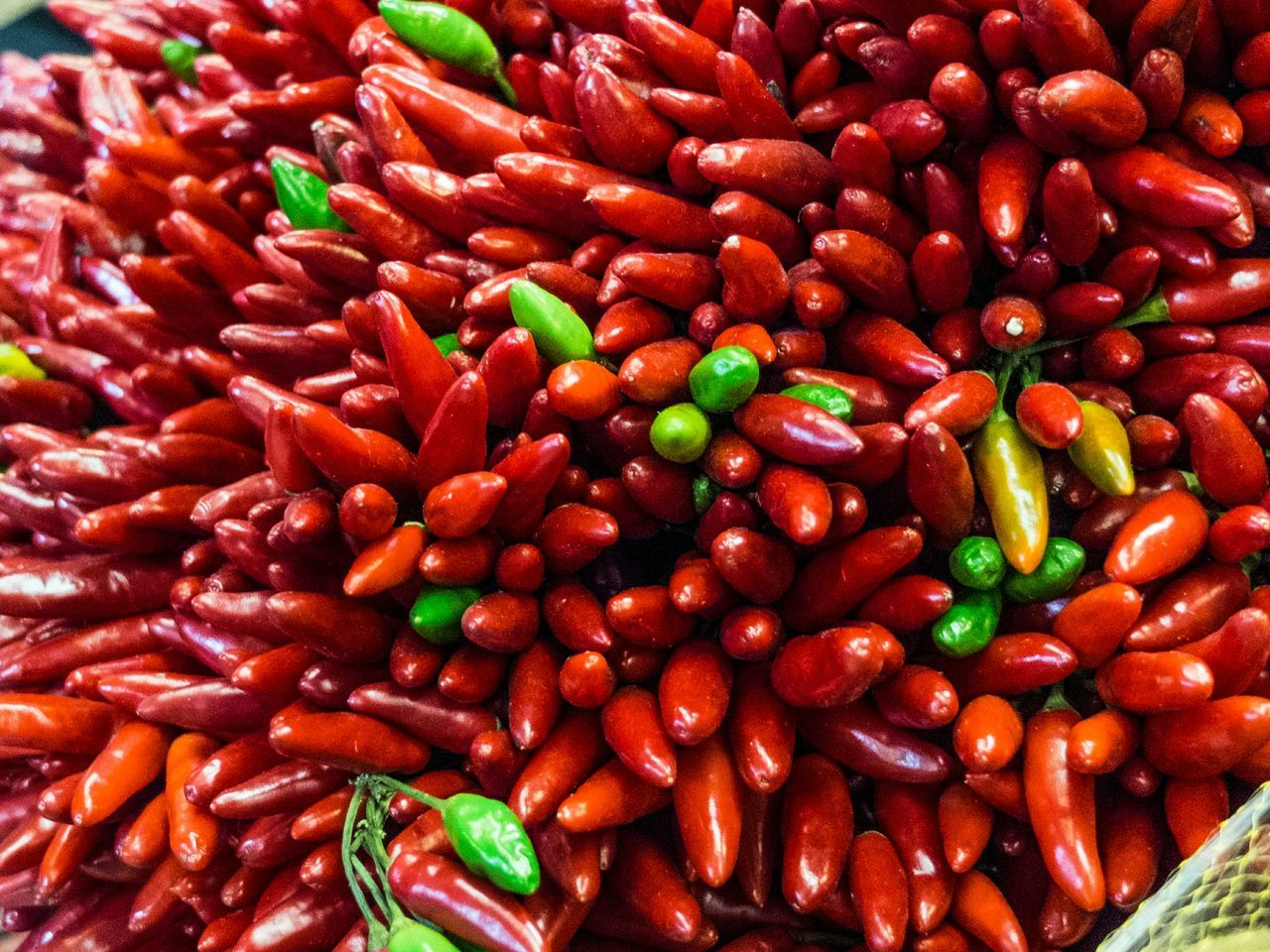 Red Freshness Food Healthy Eating High Angle View Food And Drink Spice No People Full Frame Backgrounds Close-up Ready-to-eat Day Outdoors Chili  Chilies Abundance Red Green Farm Produce Market Stall Spicey
