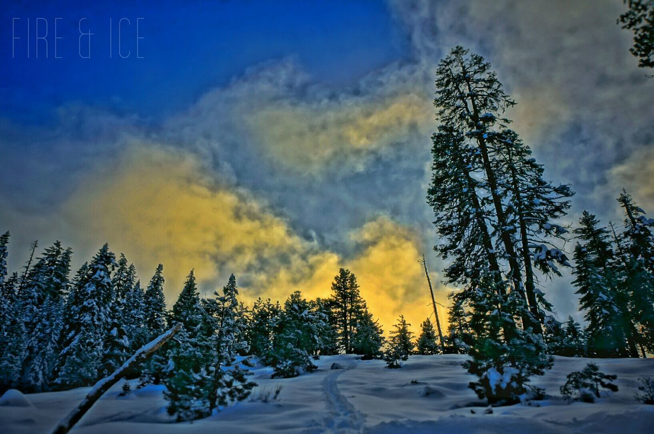 Fireandice Sunset Snow Mountains Trees Art HDR Nature Peace Inspire