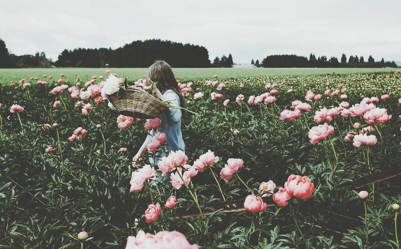 flower, nature, growth, beauty in nature, field, fragility, plant, tranquility, freshness, tulip, outdoors, landscape, petal, blooming, spring, day, flower head, rural scene, women, sky, grass, one person, people