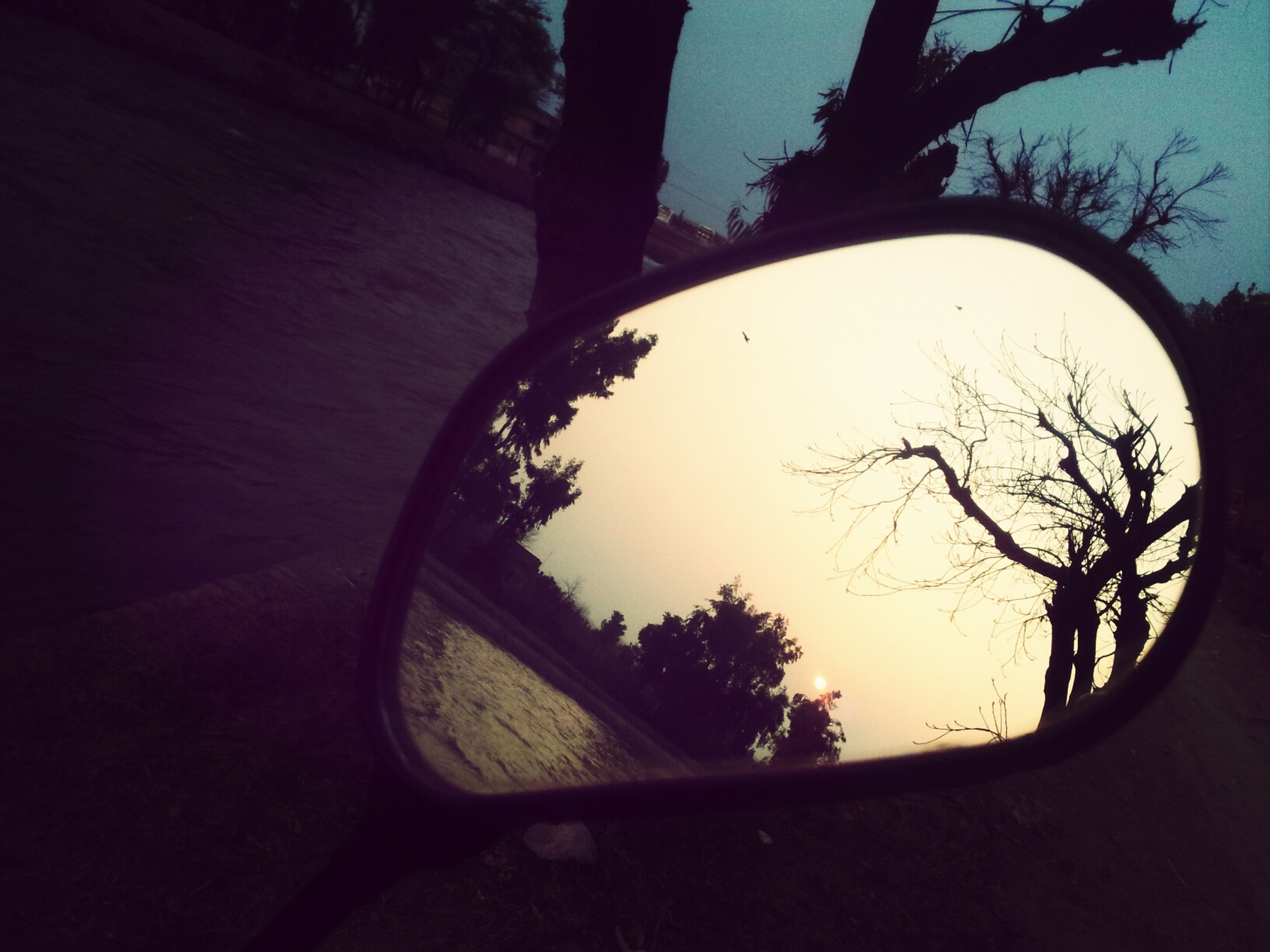 tree, silhouette, sky, transportation, circle, reflection, sunset, branch, bare tree, nature, mode of transport, land vehicle, side-view mirror, tranquility, outdoors, no people, tranquil scene, road, beauty in nature, car