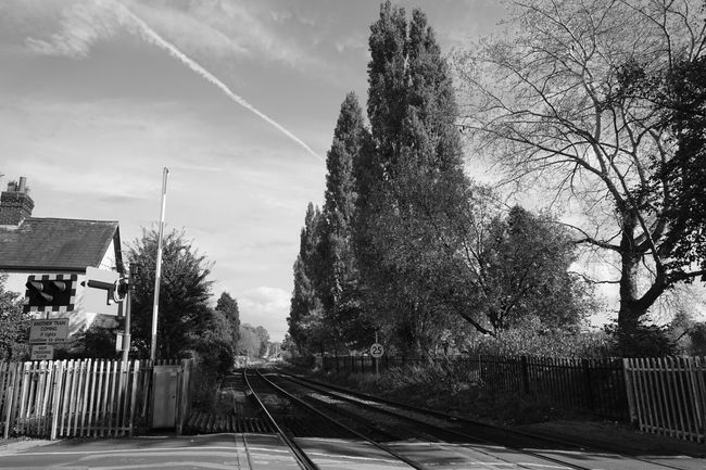 Down The Tracks Tree Transportation Railroad Track Rail Transportation No People Outdoors Sky Day Built Structure Nature Architecture Nantwich Autumn🍁🍁🍁 Autumn Leaves Autumn Colors Sony A5000 Monochrome Photography Monochrome Autumn England Uk Cheshire train